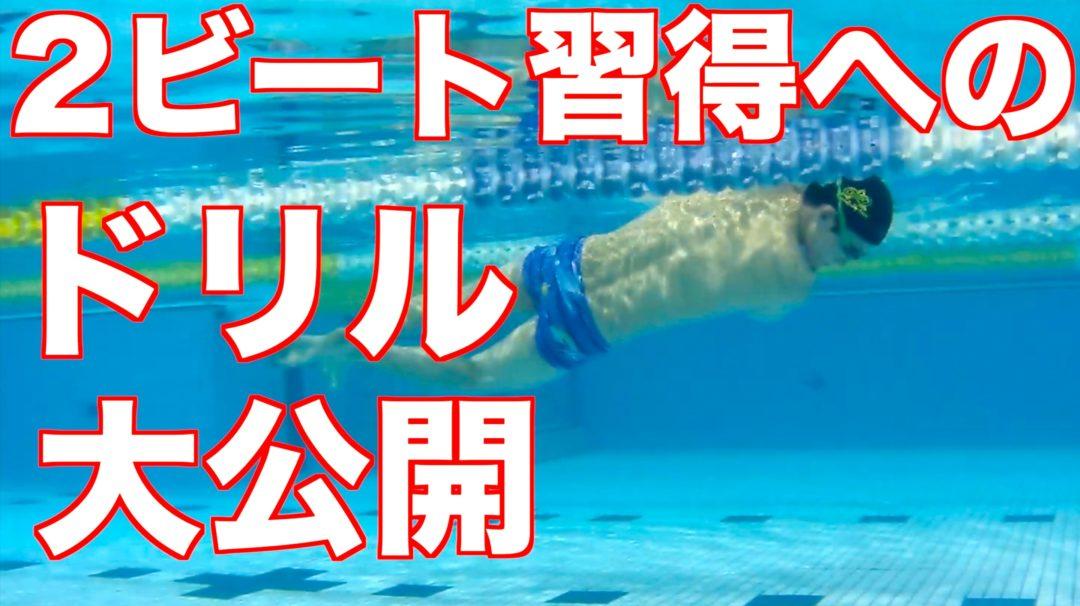【元日本代表解説】クロール (2ビート) の泳ぎ方と練習方法 3