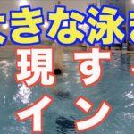 クロール 大きく泳ぐコツ【元水泳日本代表解説】