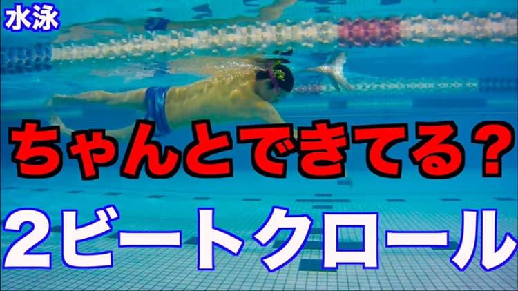 【初心者向け】2ビートキッククロールの泳ぎ方